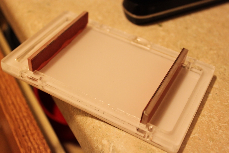 GelIS Tray Holds Water
